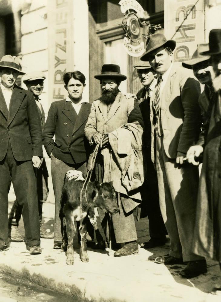 men with calf Zolochiv market in 1934 Ukraine