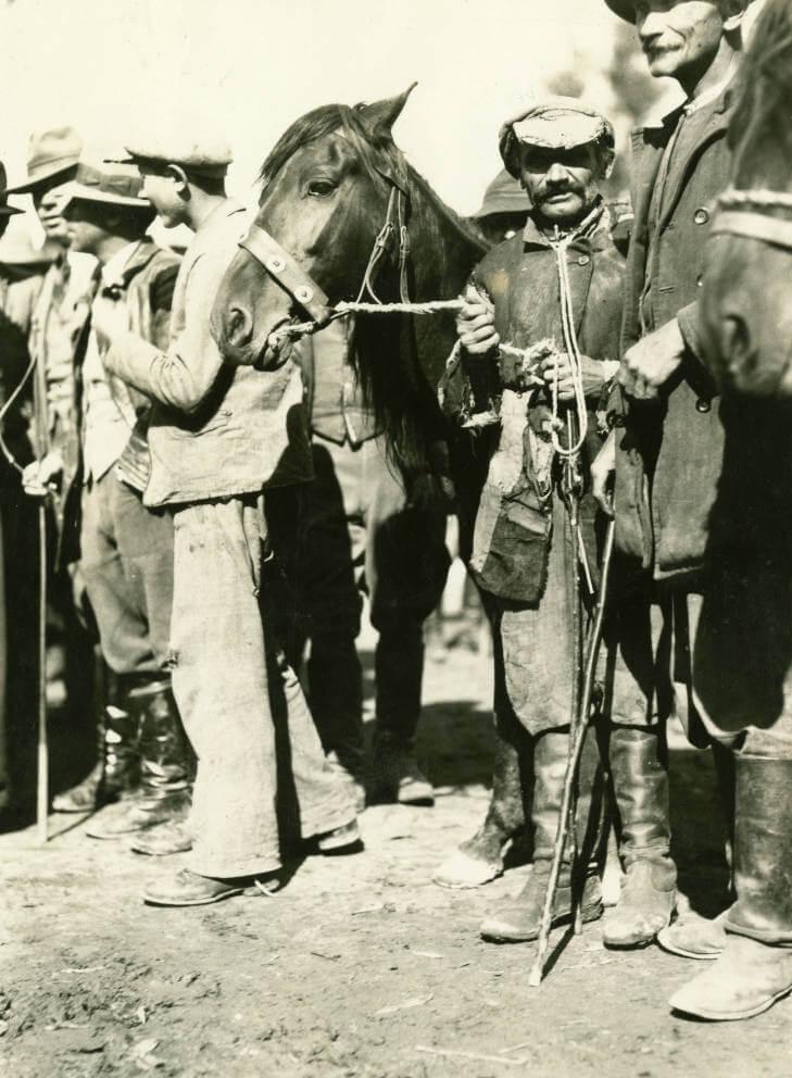 men with horses at Zolochiv market in 1934 Ukraine